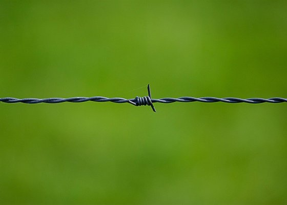 barbed wire security